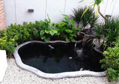 Zen Bio Koi Pond