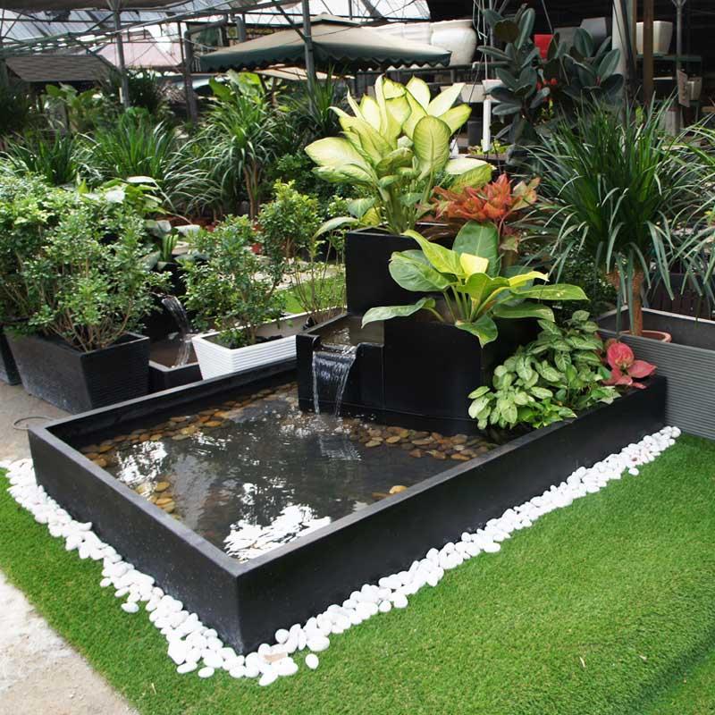 Magic Garden Pond