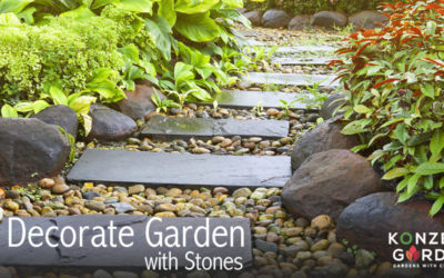 How Can Stones Help Your Garden?