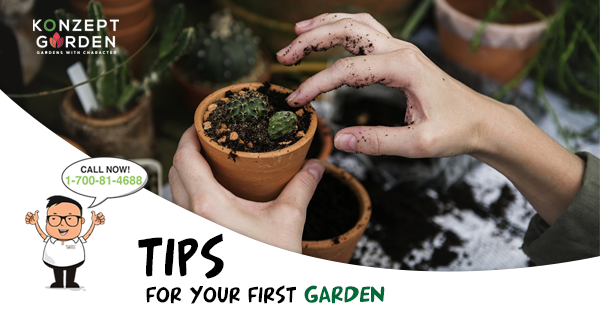Gardens For Your Tips