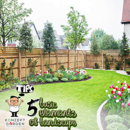 Basic Elements Of Landscape You Need To Know