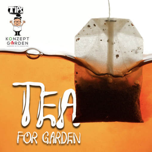 Don't Toss Your Used Tea Bags
