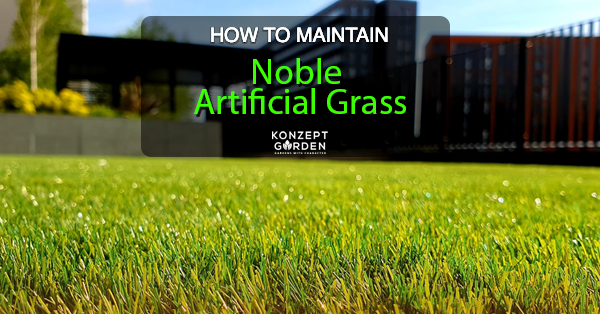 How To Maintain Noble Artificial Grass?
