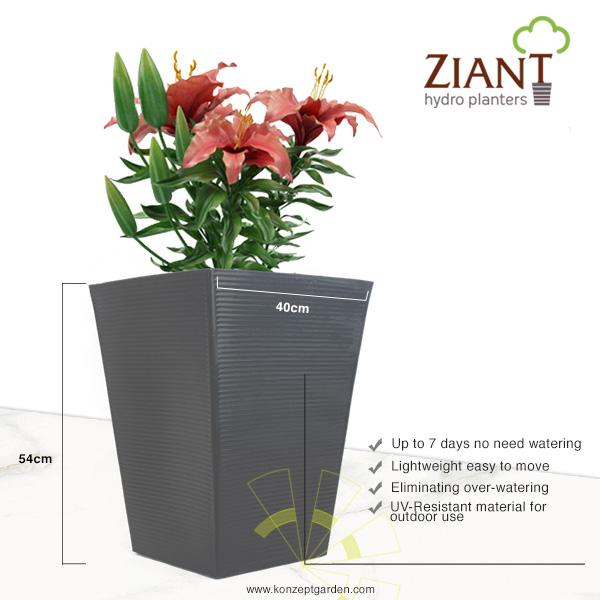 Ziant Hydro Planter