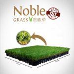 NOBLE GRASS (DIY) PREMIUM 35 Image