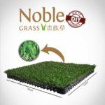 NOBLE GRASS (DIY) VALU 30 Image