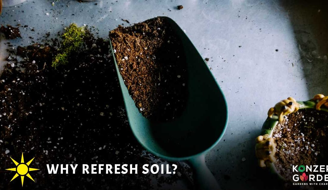 How and Why Refresh Soil