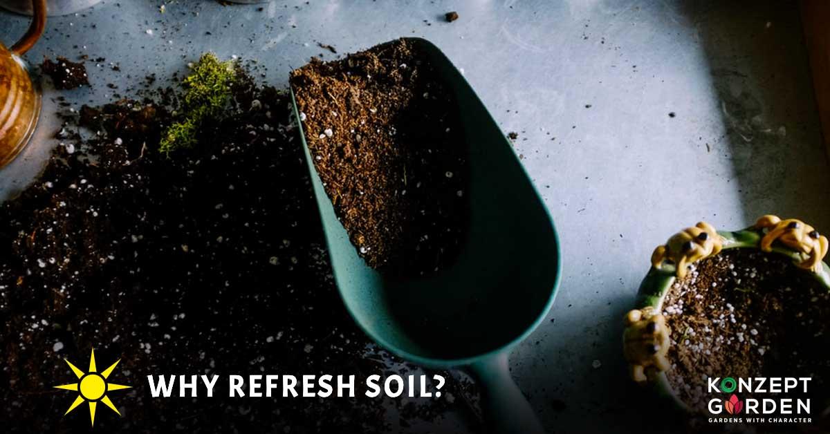 soil, garden, gardening