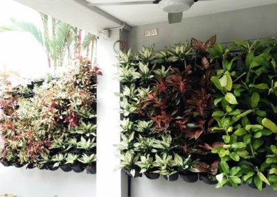 Ziant Hydro Planters_work 4