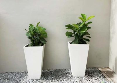 Ziant Hydro Planters_work1