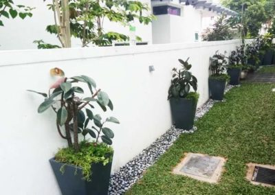 Ziant Hydro Planters_work11