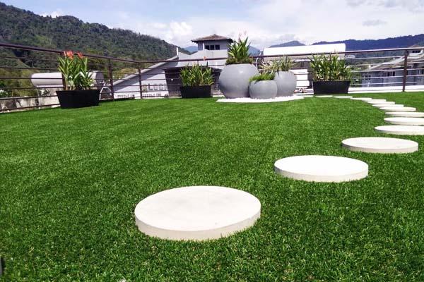 green-wall-vertical-garden